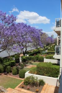 Bridgewater Terraces - best accommodation in Brisbane